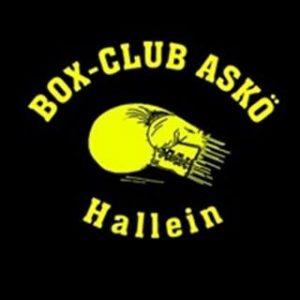 boxclub hallein